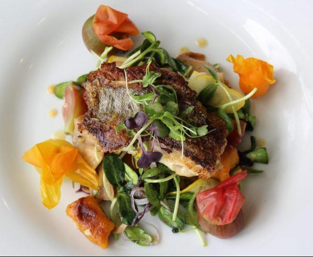 Oceanic Chef Prepared Dish of Snowy Grouper Panzanella